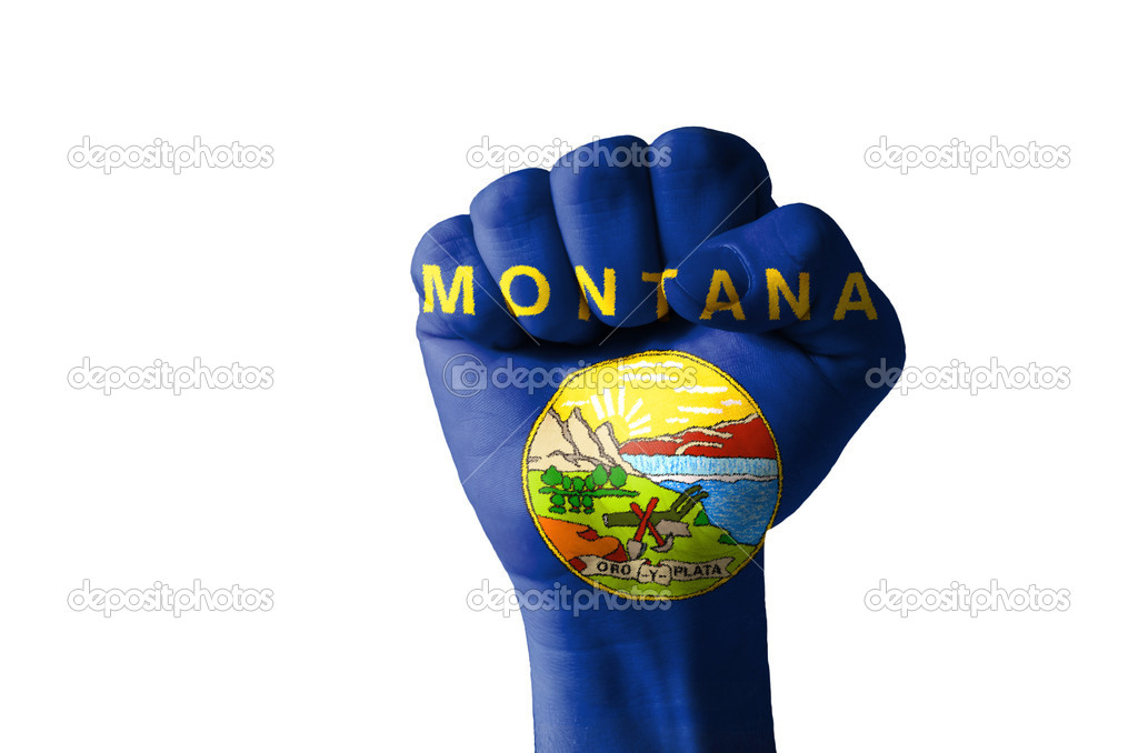Low key picture of a fist painted in colors of american state flag of missouri — Stock Photo #9861132