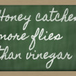 Expression -  Honey catches more flies than vinegar - written on — Stok fotoğraf