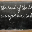 Expression -  In the land of the blind, the one-eyed man is king — Stock Photo
