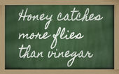 Expression - Honey catches more flies than vinegar - written on — Zdjęcie stockowe
