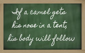 Expression - If a camel gets his nose in a tent, his body will f — 图库照片