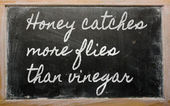 Expression - Honey catches more flies than vinegar - written on — Стоковое фото