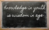 Expression - Knowledge in youth is wisdom in age - It takes all — Zdjęcie stockowe