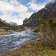 Rural valley with riveron norway - Foto de Stock