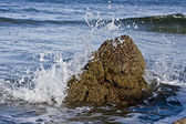 Small rock in waves — Stock Photo