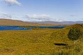 Krajobrazu wiejskiego w szkocji — Zdjęcie stockowe