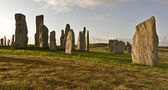 Standing stones of callanish — Stock Photo