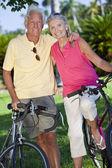 Glücklich altes paar auf fahrrädern in einem park — Stockfoto