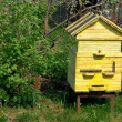 Stock Photo: Apiary.