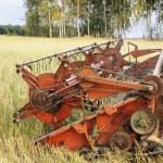 Harvesting, — Stock Photo