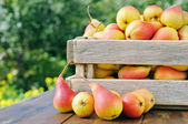 Pears in a wooden box. — Stock Photo