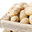 Stock Photo: Ripe potatoes