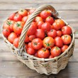 Tomatoes crop — Stock Photo