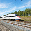 High-speed rail — Stock Photo #9132739
