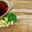 Linden tea. Tilia. - Stock Photo