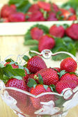 Fresh strawberries — ストック写真