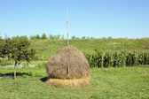 Hayrick (haystack) near the garden with vegetables — Stock Photo