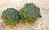 Broccoli — Stok fotoğraf