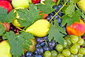 新鮮な有機フルーツ — ストック写真
