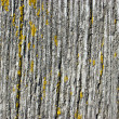 Stock Photo: Old lumber