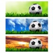 Timeline Cover ( Ratio 851x315 ) - football in green grass - Stock Photo