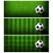 Timeline Cover ( Ratio 851x315 ) - football in green grass — Stock Photo #10483911