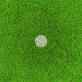 Penalty point on football grass field. — Stock Photo