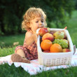 Picnic in park - Stock Photo