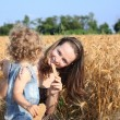 Picnic in field — Stock Photo