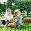 Children on picnic — Stock Photo #8140223
