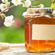 Flowery honey in glass jar — Stok fotoğraf