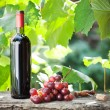 Stock Photo: Wine bottle and bunch of grapes