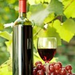 Red wine bottle, glass and bunch of grapes - Stock Photo
