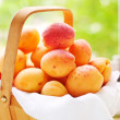 Basket with juicy fruits — Stock Photo