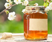 Flowery honey in glass jar — Foto de Stock