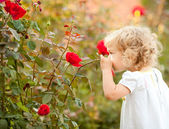 Beautiful child smelling rose — Stock Photo
