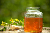 Flowery honey in glass jar — Stock fotografie
