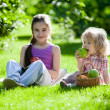 Children having picnic — Stock Photo #9152068