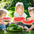 Children having picnic — Stock Photo #9152238