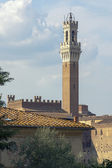 View of Torre del Mangia Siena Tuscany — Stock fotografie