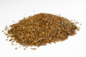 Linseeds — Stock Photo