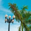 Vintage street lantern and palm tree — Stock Photo