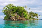 Island coastline, Banyak Archipelago — Stock Photo
