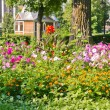 Landscaped flower bed — Stock Photo #10354766