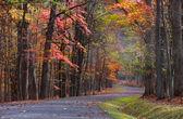 Scenic autumn drive — Stock Photo