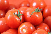 Fresh riped tomatoes — Stock Photo