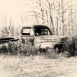 old pickup truck — Stock Photo