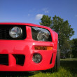 Red Mustang — Stock Photo #7986107
