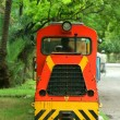 Toy Train — Stock Photo #7989209