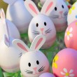 Stock Photo: Easter Bunnys